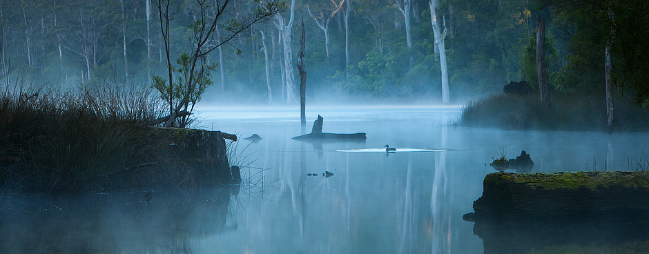 Lake Beedelup Pemberton Photo by Paul Theseira